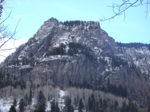 21 & Up Buttress